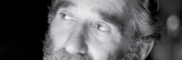 Il Piave mormorava (M. Rigoni Stern)