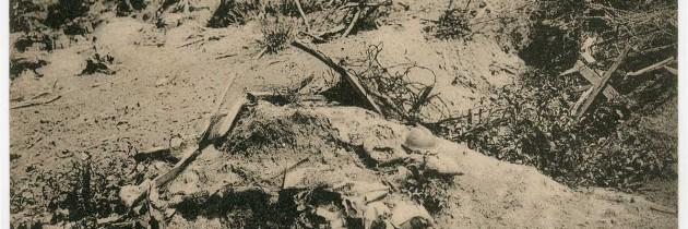 """Il cannibalismo della Prima guerra mondiale: l'uomo """"bestiale"""" (C. Tenuta)"""