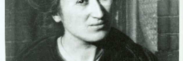 """""""L'eccidio di massa del proletariato europeo"""": Rosa Luxemburg e la Prima guerra mondiale (V. Cercenà)"""